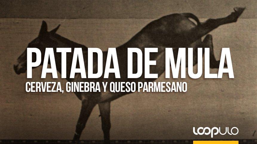 PATADA DE MULA | Cerveza, ginebra y queso parmesano