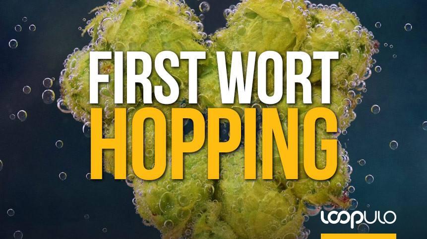 First Wort Hopping, la técnica del lúpulo de adición temprana – Loopulo
