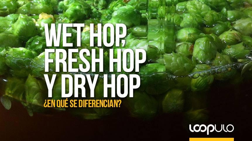 Wet Hop, Fresh Hop y Dry Hop, ¿en qué se diferencian?