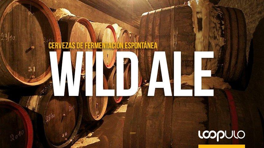 Wild Ale, los estilos de cerveza tras la fermentación espontánea