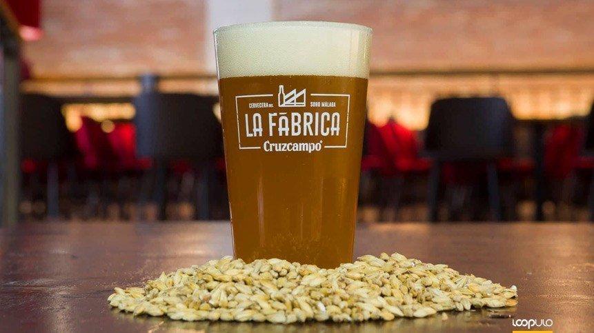 La Fábrica Cruzcampo de Málaga lanza tres nuevas variedades – Loopulo