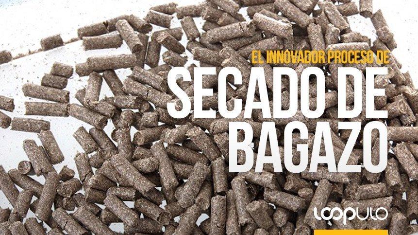 Mahou San Miguel y L. Pernía impulsan la economía circular gracias a un innovador proceso de secado de bagazo mediante energía solar