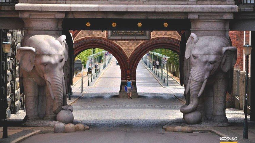 Carlsberg reduce un 50% el uso de agua de Fredericia – Loopulo