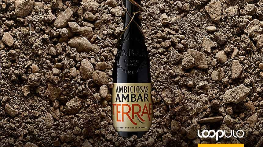 Ambar Terrae, una cerveza elaborada con lúpulo de viña