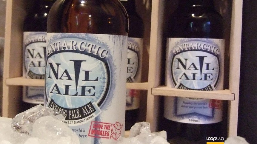 Antarctic Nail Ale – Loopulo