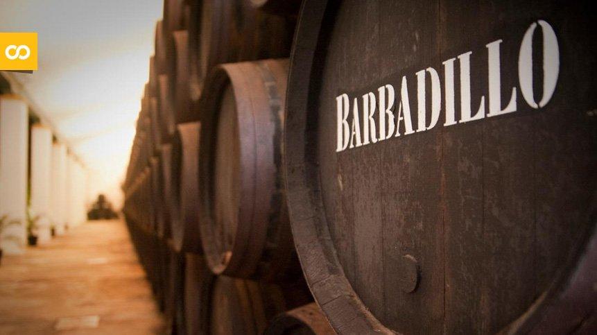 Barbadillo y otras empresas aragonesas se unen al fondo solidario de Ambar – Loopulo