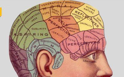 El consumo bajo o moderado de alcohol ayuda a mantener el cerebro más joven
