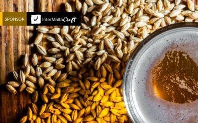 La malta en la historia: el papel de este ingrediente esencial de la cerveza