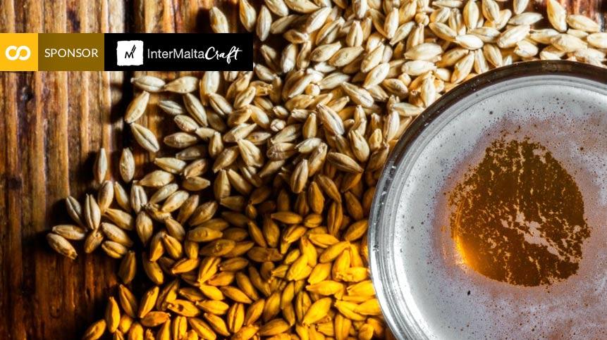La malta en la historia: el papel de este ingrediente esencial de la cerveza - Loopulo