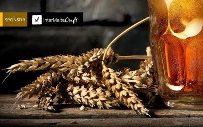 ¿Qué papel tiene la malta en la elaboración de la cerveza?